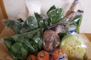 冬の野菜ボックス届きました🎁